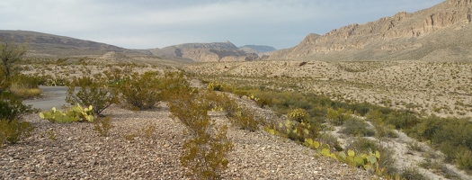 Boquillas Canyon from overlook