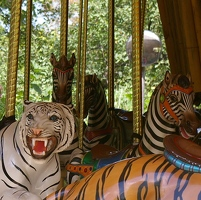 Carousel tiger and zebra